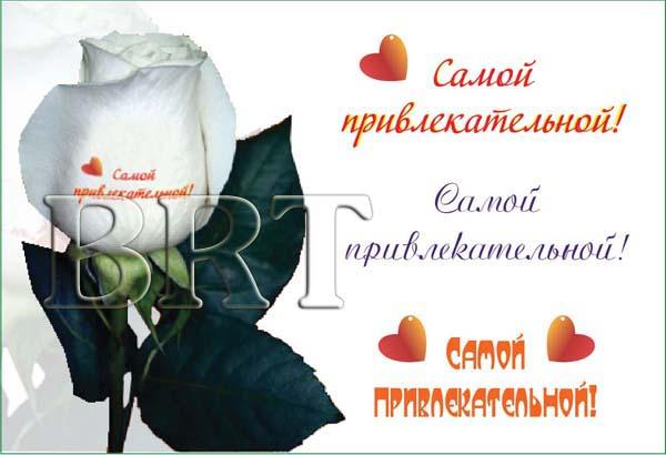 Цветы с нанесенными на них надписями, рисунками